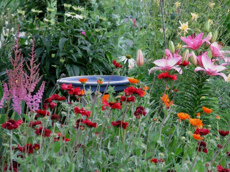Landscaping Ideas & Garden Ideas Blog YardShare Com