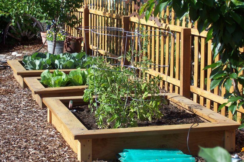 Garden Plot Ideas Inspiration Interior Designs