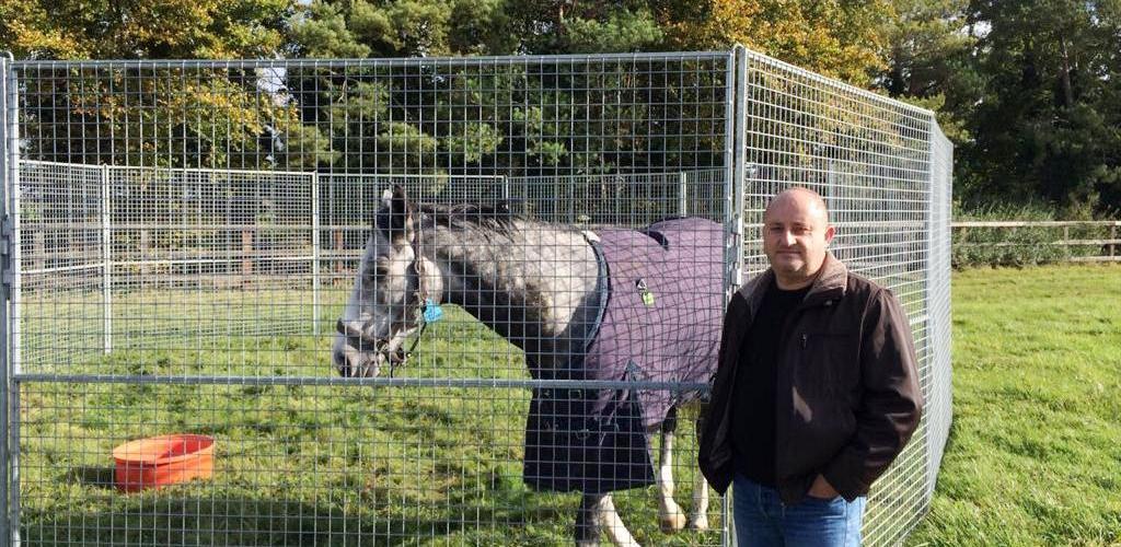 Yarış Atlarında Rehabilite