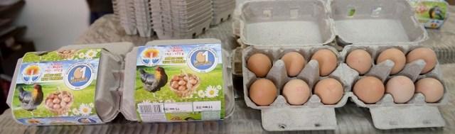 Köylülerin ürettiği yumurtalar