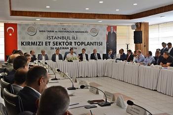 faruk_celik_istanbul_1
