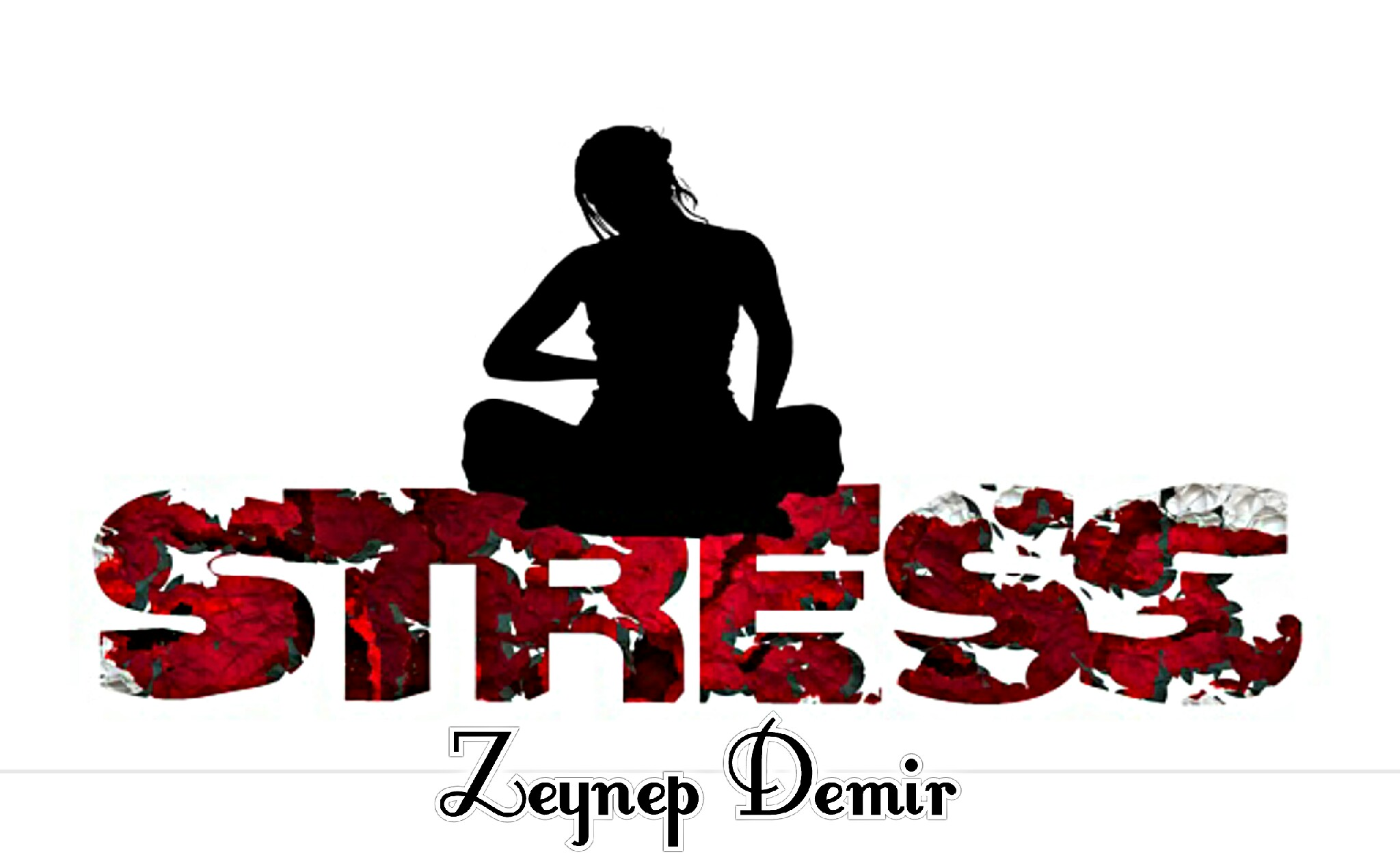 STRES VE STRES YÖNETİMİ…