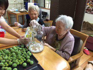 20150529みんなで梅ジュースを作りました!3