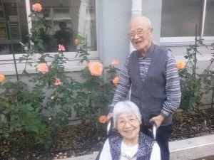 20151023アンネのバラが一般公開していたので、散歩がてら見学♪3