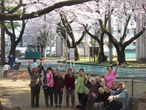 20150403花小金井からも、お花見特集をお届けします!7