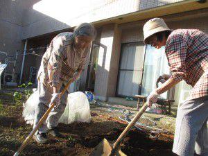 20151007冬野菜を植えています!3
