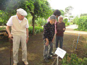 20150611東京都薬用植物園へ行ってきました!3