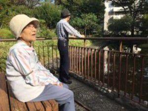 20151003お散歩日和で日光浴してきました!