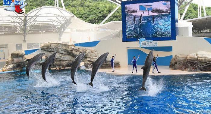 花蓮海洋公園 – 東海岸旅遊 @YA !野旅行-玩樂全世界