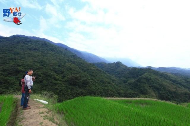 富里吉拉米代Cilamitay部落-天空梯田 @YA !野旅行-吃喝玩樂全都錄
