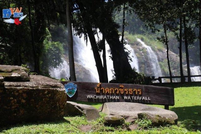 攀登泰國第一高峰 冷到發抖的清邁之旅 @YA !野旅行-吃喝玩樂全都錄