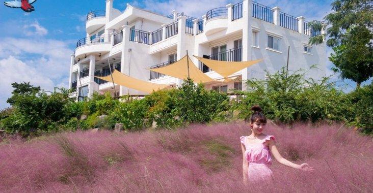 【韓國濟州-秋季限定】Manor Blanc的粉紅亂子草吹亂少女心 @YA !野旅行-玩樂全世界