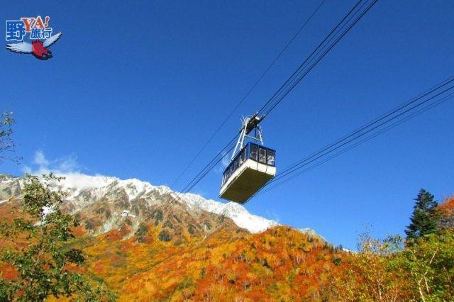 立山黑部飽覽阿爾卑斯山脈高山楓紅 @YA 野旅行-陪伴您遨遊四海