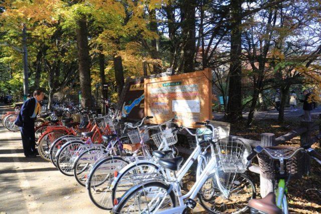 輕井澤老街散策 雲場池浪漫秋楓 @YA !野旅行-吃喝玩樂全都錄