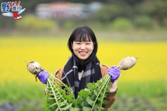 花蓮食農教育體驗-馬太鞍濕地捕魚拔蘿蔔 @YA !野旅行-吃喝玩樂全都錄