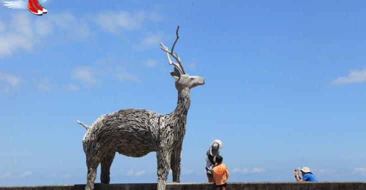 狗年旺旺來,春節假期東海岸景點、部落旅遊資訊一把罩! @YA !野旅行-吃喝玩樂全都錄