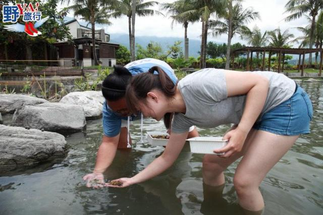 花蓮食農教育體驗- 壽豐休閒農業區有機百合淡水龍蝦 @YA !野旅行-吃喝玩樂全都錄