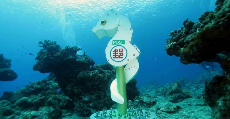 湛藍綠島~台灣史上最高獎金 綠島潛水攝影比賽等您來挑戰 @YA 野旅行-陪伴您遨遊四海