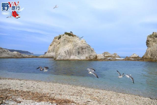 岩手、宮古 淨土之濱 搭船餵海鷗飽覽海岸風光 @YA !野旅行-吃喝玩樂全都錄