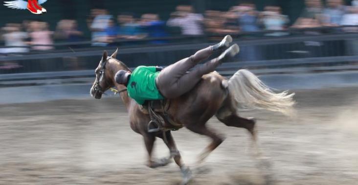 新疆|烏魯木齊 汗血寶馬基地 野馬國際商務會館 @YA !野旅行-玩樂全世界