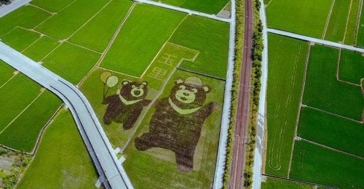 花蓮|玉里 有機農業輕旅行即日起開放報名 @YA !野旅行-玩樂全世界