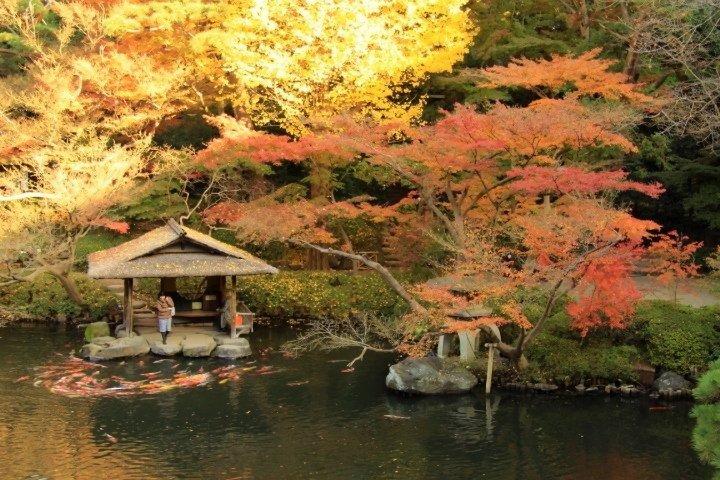TripAdvisor 公佈「2018年日本最佳免費景點Top 10」 @YA !野旅行-吃喝玩樂全都錄
