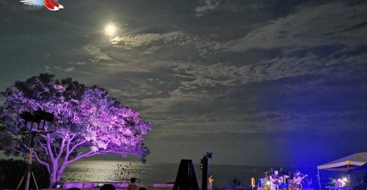 東海岸限定!充滿異國風情的月光•海音樂會 @YA !野旅行-玩樂全世界