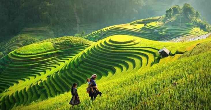 享受五星法式旅程,極致療癒秘境在越南   @YA !野旅行-吃喝玩樂全都錄