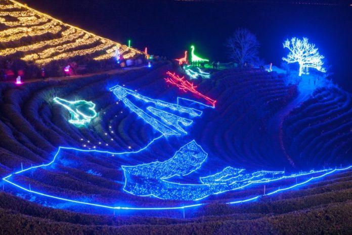 韓國冬天不只是滑雪-特色慶典等您來體驗 跨年迎日出、冰上釣鱒魚、茶園賞燈海 @YA !野旅行-吃喝玩樂全都錄