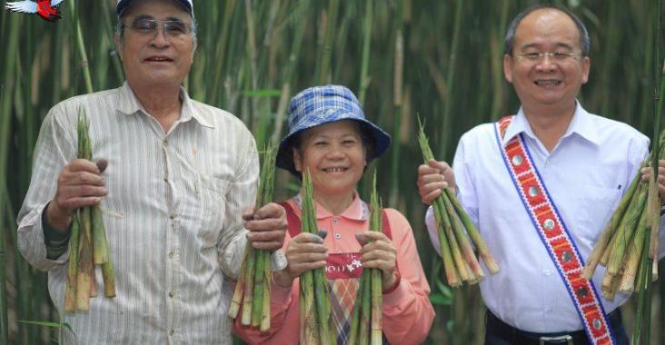 季節限定縱谷原住民美食 太巴塱箭筍美味上桌 @YA !野旅行-玩樂全世界
