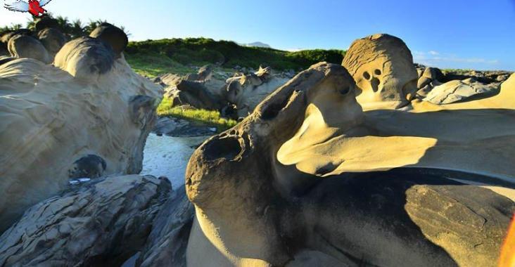 識天翻地覆的岩石世界-富岡地質公園免費導覽活動開跑 @YA !野旅行-玩樂全世界