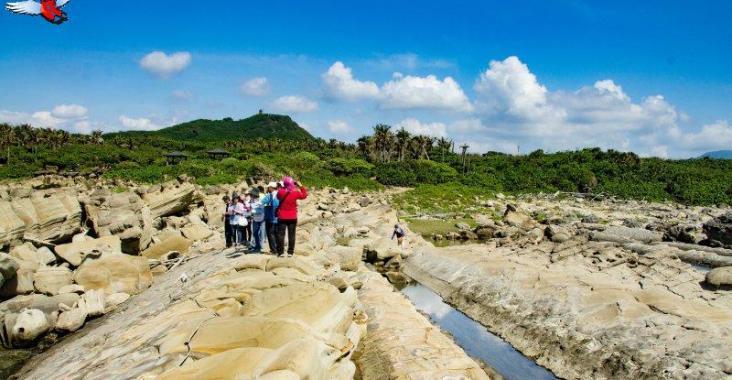 小野柳正名為富岡地質公園 結合東海岸人文推觀光 @YA !野旅行-吃喝玩樂全都錄