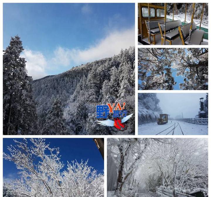 太平山最新雪況看這裡 @YA !野旅行-吃喝玩樂全都錄