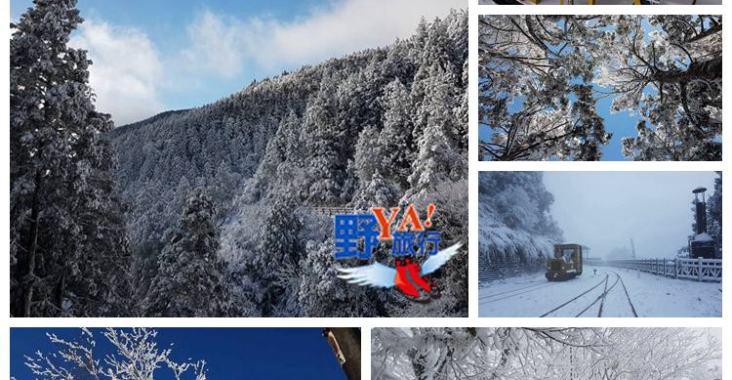 太平山最新雪況看這裡 @YA !野旅行-玩樂全世界