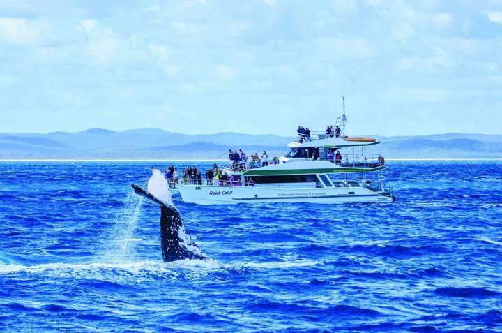 全台首創!澳洲昆士蘭要在台北晶華酒店辦2021澳洲海洋保衛隊遊學營 @YA !野旅行-玩樂全世界