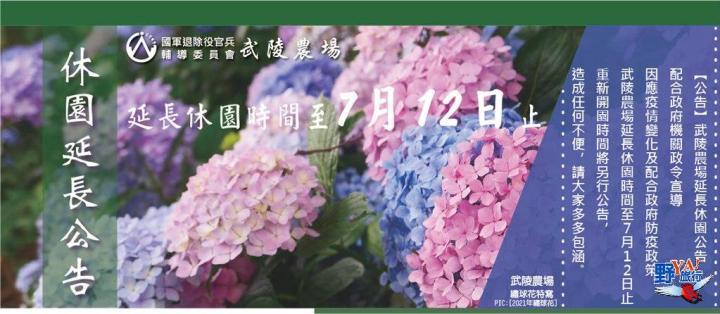 武陵農場池上夢幻繡球花喻希望 盼為疫情祈福 @YA !野旅行-吃喝玩樂全都錄