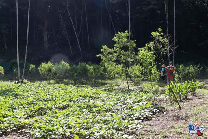 遠得要命的部落 充滿排灣風情的土坂村 @YA !野旅行-吃喝玩樂全都錄