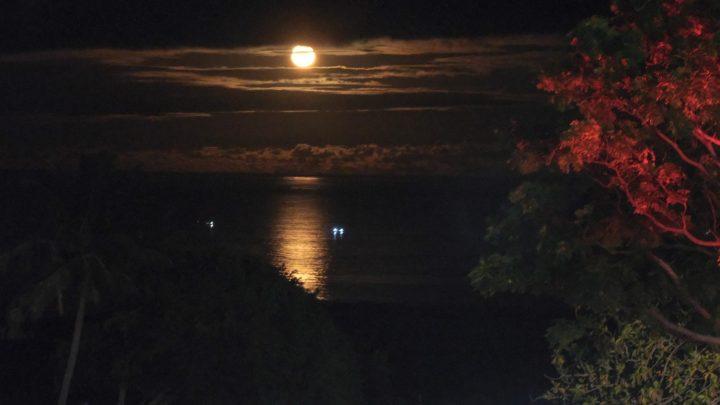 2021東海岸大地藝術節」唯一線上月光·海音樂會絕美登場,2小時創造超過1.6萬次的觀看數 @YA !野旅行-吃喝玩樂全都錄