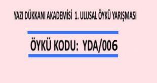 ÖYKÜ YARIŞMASI Öykü Kodu: YDA/006