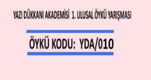 ÖYKÜ YARIŞMASI Öykü Kodu: YDA/010