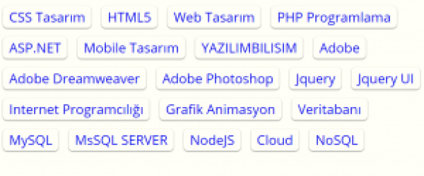 CSS buton