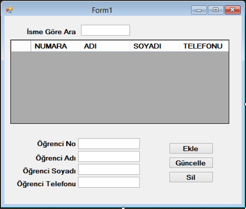 access_baglanti_form