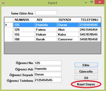 kayit_sayisi