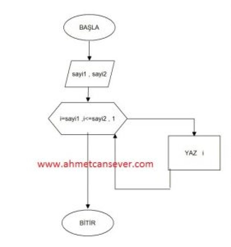Algoritma Örnekleri 6