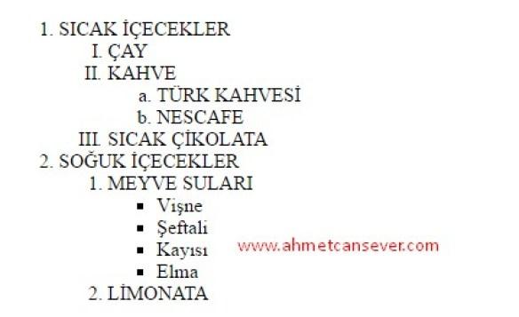 liste_ornekleri_1