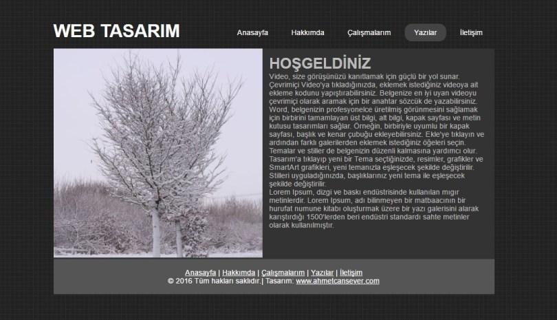 html_css_web_sayfasi