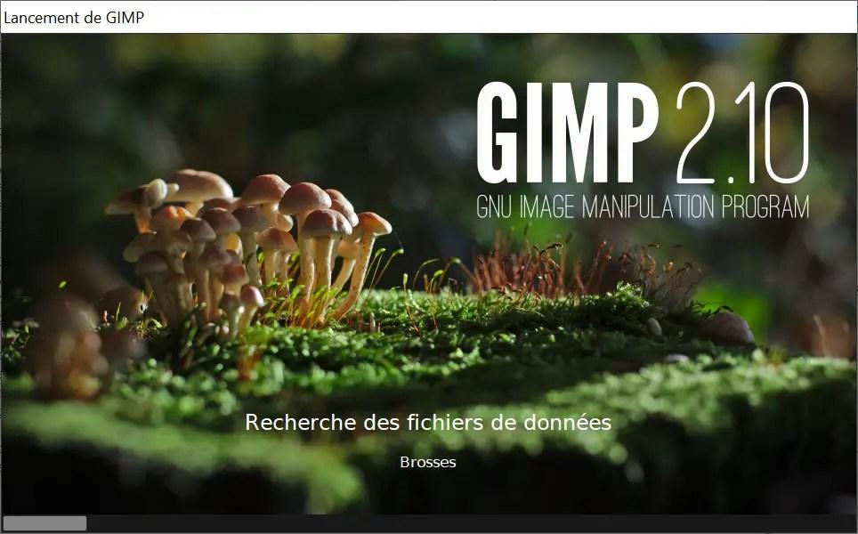 How to change GIMP language?