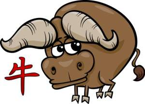 Year of the Ox- Chinese Horoscope 2020