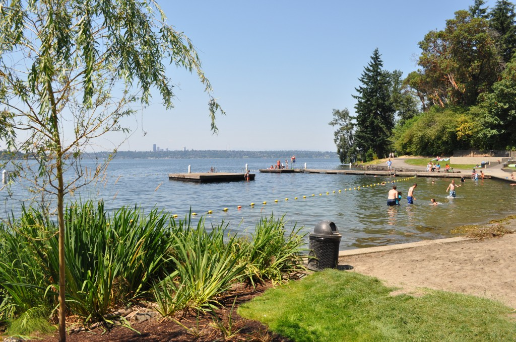 Chism Beach Park   Year of Seattle Parks