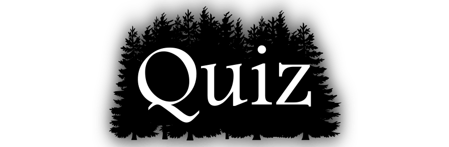 Wie gut kennt ihr Horrorfilme aus den 90ern?
